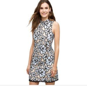 Anthropologie Women's Sleeveless Mock Dress SZ 6